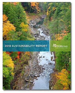 Fourstar_Sustainability Report_2018-cover